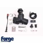 Forge Motorsport Audi RS3 8P 2.5 TFSI Quattro (2011-2012) High Capacity Valve & Kit - FMARSDV
